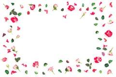Цветет состав Рамка сделанная из свежих роз и высушенных цветков Плоское положение, взгляд сверху Стоковые Изображения RF