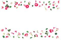 Цветет состав Рамка сделанная из свежих роз и высушенных цветков Плоское положение, взгляд сверху Стоковые Фото