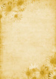 цветет старая бумага иллюстрация вектора