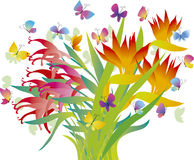 цветет тропическое Стоковая Фотография