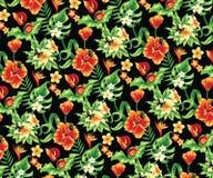 цветет тропическое Стоковые Фото