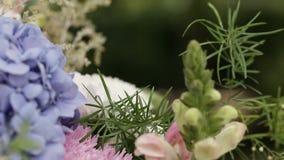 Цветет украшения Стоковые Изображения