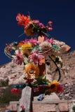 цветет усыпальница Стоковые Изображения