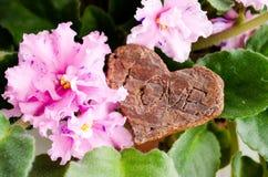 """цветет фиолеты Сердце со словами """"любовь """" взволнованности положительные Сердце древесины Розовые цветки стоковые фотографии rf"""
