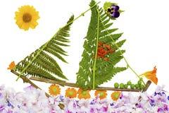 цветет яхта моря Стоковые Изображения RF