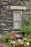 цветет двор перед входом Стоковое Изображение RF