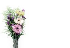цветет gerbera стоковая фотография