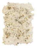 цветет handmade бумага листьев внутренности Стоковые Фото