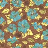 цветет hibiscus Стоковые Фотографии RF
