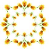 цветет ornamental Стоковое Фото