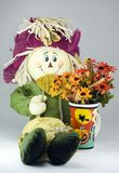 цветет skarecrow h Стоковое Фото