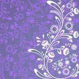 цветет tracery Стоковые Изображения RF