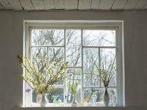 цветет windowsill Стоковое Изображение RF