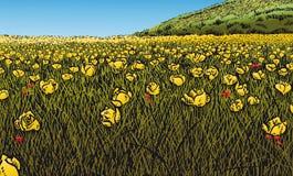 цветистый лужок Стоковое фото RF