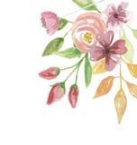Цветка лета рамки акварели покрашенная рука углового флористическая Стоковое фото RF
