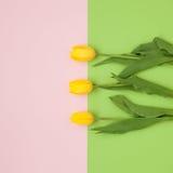 3 цветка на пестротканой предпосылке Стоковая Фотография