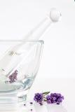 Цветки лаванды в стеклянном миномете Стоковое Изображение RF