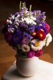 Цветки астры Стоковое Изображение RF