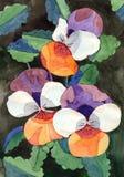 Цветки альта картины акварели Стоковое Изображение RF