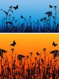 цветки бабочек предпосылки Бесплатная Иллюстрация