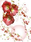цветки бабочек Стоковые Фотографии RF