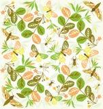 Цветки бабочки картины иллюстрация вектора