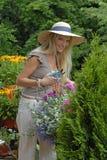 цветки балкона Стоковое Изображение