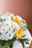 Цветки бегонии и gerbera Стоковое Фото