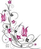 Цветки, ботаника, флористическая Стоковые Изображения