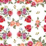 Цветки букета акварели на белой предпосылке флористическая картина безшовная Стоковые Фото