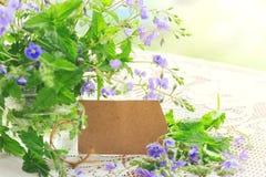 Цветки букета малые чувствительные голубые персиянки veronica в стекле Стоковая Фотография