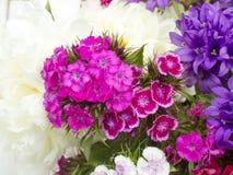 цветки букета цветастые Стоковое фото RF