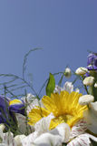 цветки букета Стоковая Фотография RF