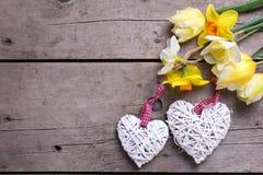 Цветки весны желтые и 2 белых декоративных сердца Стоковые Изображения RF