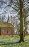 Цветки весны и старая церковь в Oudeschans стоковая фотография