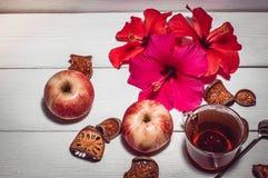 Цветки весны и чай утра Стоковая Фотография