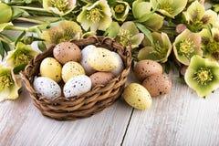 Цветки весны с пасхальными яйцами в пастельных цветах Стоковая Фотография RF