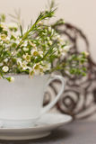 Цветки весны с предпосылкой сердца стоковые фотографии rf