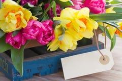 Цветки весны с пустой биркой стоковые изображения