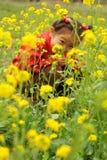 цветки видят Стоковые Изображения RF