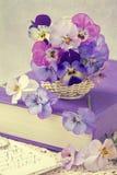 Цветки Виолы Стоковые Фотографии RF