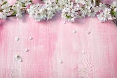 Цветки вишни на деревянной доске Стоковая Фотография RF