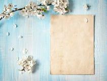 Цветки вишни на деревянной доске Стоковые Изображения RF