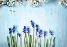 Цветки вишни на деревянной доске Стоковое Изображение