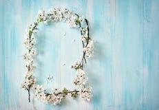 Цветки вишни на деревянной доске Стоковые Фотографии RF