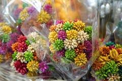 Цветки высушенной травы в красочной тени стоковые фото