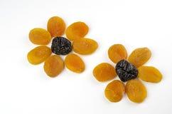 Цветки высушенных плодоовощей стоковое фото