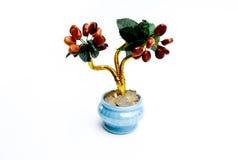 Цветки в баках Стоковая Фотография RF