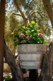 Цветки в бочонке вина стоковые изображения rf