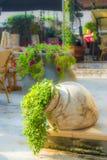 Цветки в вазе глины Стоковые Фотографии RF